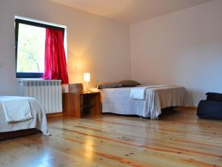 Casas da Costeira - Douro Villa - Fafe vacation rentals
