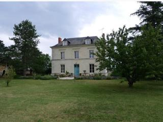 4 bedroom House with Dishwasher in Pouzay - Pouzay vacation rentals