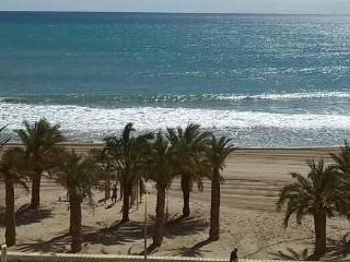 BeachFront Flat Playa Muchavista:Piso1ªLinea Playa - Campello vacation rentals