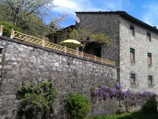 L'OLIVO - Garden and colored countryside house - Pescaglia vacation rentals