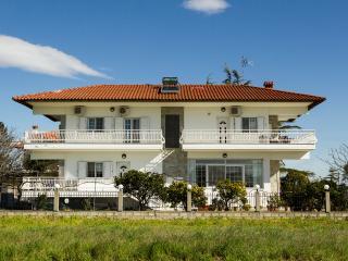 4 bedroom Villa with Internet Access in Agia Triada - Agia Triada vacation rentals