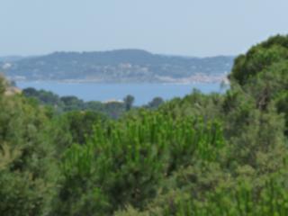 Le domaine des pins - Saint-Maxime vacation rentals