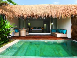 Tropical Suite Villa private pool garden view 4 - Canggu vacation rentals