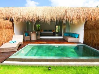 Tropical Suite Villa private pool garden view 5 - Canggu vacation rentals