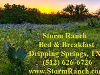 Storm Ranch Bed and Breakfast - Dripping Springs vacation rentals