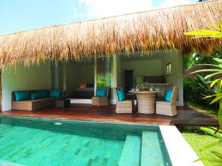 Tropical 2 Bedroom Suites Villa garden view Canggu - Canggu vacation rentals