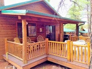 Peaceful Pines Cabin w/ Fenced Yard for Dogs! Near lakes/hiking/biking and more! - Show Low vacation rentals