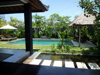 VILLA DENIS - Canggu vacation rentals