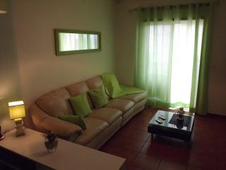 Nice Condo with Television and DVD Player - Oliveira do Bairro vacation rentals