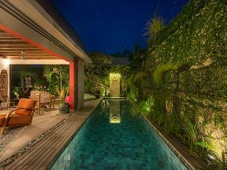 Cozy Villa with Deck and Internet Access - Seminyak vacation rentals