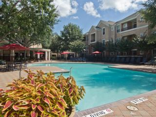 Best Rate Clean, Cozy Apt. near Sugar Land, TX - Katy vacation rentals