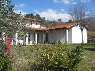 Nice Bed and Breakfast with Internet Access and Wireless Internet - Reggello vacation rentals