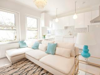 Elegant apartment in Kensington Olympia - London vacation rentals