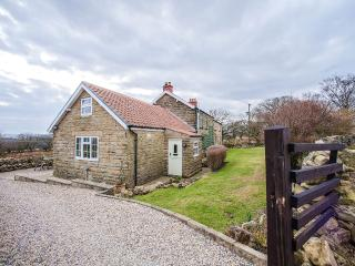 Hawthorn Cottage  Goathland North York Moors - Goathland vacation rentals