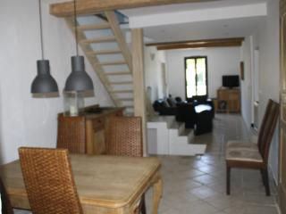 Charming french maison de village in Provence - Trans-en-Provence vacation rentals
