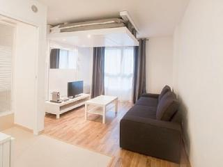 CHARMANT APPARTEMENT PROCHE MONTMATRE - Paris vacation rentals