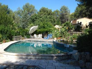 Beautiful 4 bedroomed Villa with pool near Cassis and Aix - La-Bouilladisse vacation rentals