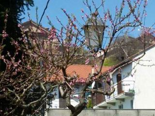 Nice Bed and Breakfast with Internet Access and Garage - Montaldo Torinese vacation rentals