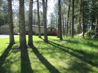 Dakota Pines Hideaway - Custer vacation rentals