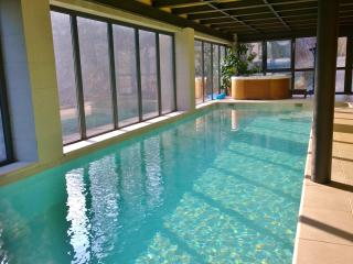Indoor pool and Jacuzzi to enjoy exclusive life - Turin vacation rentals