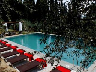 Primaluce and Meriggio House - Settignano vacation rentals