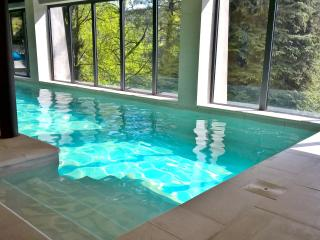 Indoor Pool and Jacuzzi to enjoy life - Turin vacation rentals