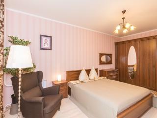4. Sutki-Dom 34, Belinskogo St. - Nizhniy Novgorod vacation rentals