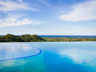 Monte Placido-G, Hilltop Ocean View, Infinity Pool - Las Terrenas vacation rentals