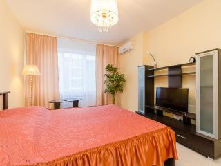 18. Sutki-Dom 64/2, Nevzorovykh St. - Nizhniy Novgorod vacation rentals