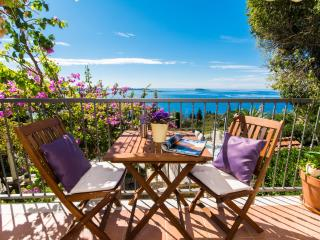 PURPLE APARTMENT WITH OUTDOOR JACUZZI AND SEA VIEW - Kupari vacation rentals
