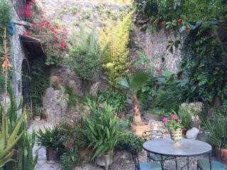 Perfect House with Deck and Internet Access - San Miguel de Allende vacation rentals