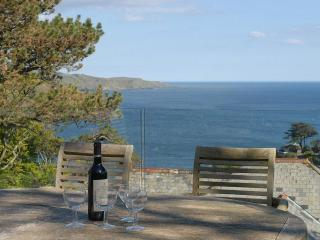 3 bedroom House with Internet Access in Salcombe - Salcombe vacation rentals