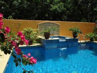 Playa Langosta - Tamarindo vacation rentals