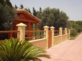 CASA EL NARANJO - Los Canos de Meca vacation rentals