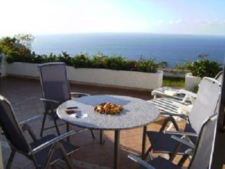 Nice Condo with Satellite Or Cable TV and Outdoor Dining Area - La Victoria vacation rentals