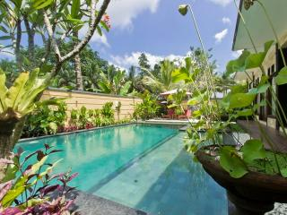 2 bed, dbl JACUZZI, 5mn Ubud Center - Ubud vacation rentals