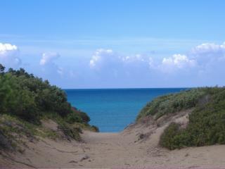 villa  200 metri dalla spiaggia Piano terra - Badesi vacation rentals