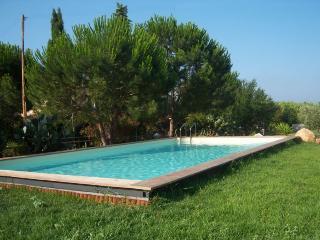 tranquillo , piscina ,spiaggia vicina, animali ok - Campo nell'Elba vacation rentals