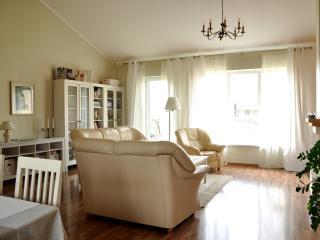 Lovely Family House, near Tallinn - Harju vacation rentals