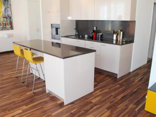 Perfect 2 bedroom Condo in Lausanne with Stove - Lausanne vacation rentals