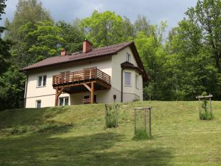 Mountains, forest, river, skiing - Silesia Province vacation rentals