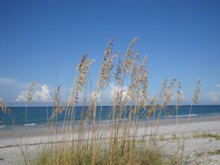 Spring/Summer in Southwest Florida! Close to IMG! - Bradenton vacation rentals