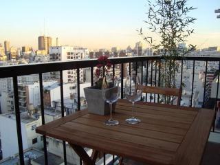 Las Cañitas, Soldado de Independencia - Buenos Aires vacation rentals