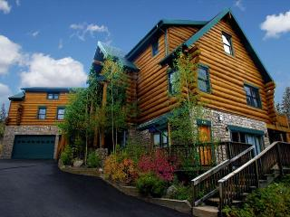 7200 square feet of ideal ski-in/ski-out mountain fun! - Breckenridge vacation rentals