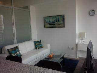 Downtown 1 Bedroom + Spacious Den - Toronto vacation rentals