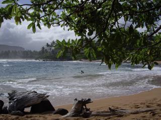 Romantic Ocean Front condo only $149 * night - Kapaa vacation rentals