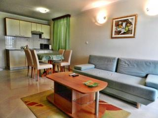 TH00529 Apartments and rooms Astoria / One bedroom A5 - Seget Vranjica vacation rentals