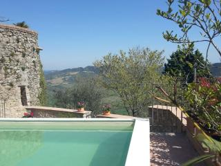 Rustic home Il Torrione, private garden and pool - Radicondoli vacation rentals