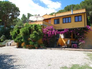 b&b due papere immerso nel verde con vista mare - Magazzini vacation rentals