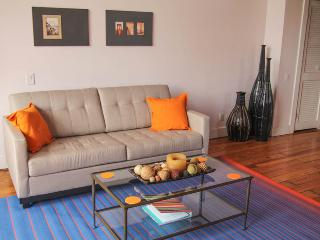 Charming Old City Lofts 313 Arch Street (3132F301) - Philadelphia vacation rentals